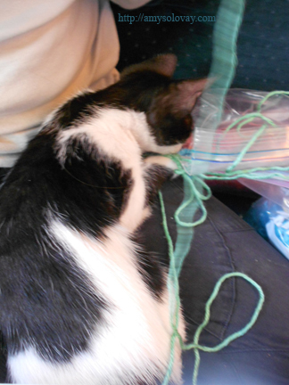 The cute cat says, I don't care about crochet, Mommy. I just want YARN!