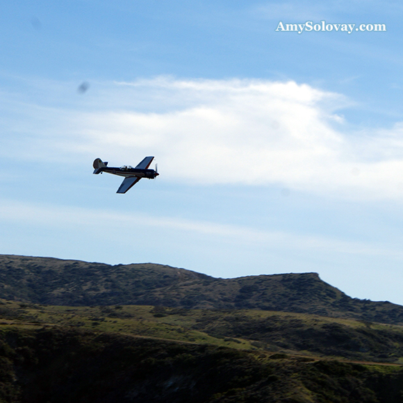 Airplane Flying Over Little Harbor on Catalina Island