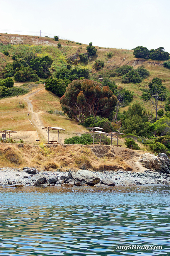 Here you can see one of your options for campgrounds in Two Harbors, California. This campground is right on the beach, with a view of Little Fisherman's Cove and Isthmus Cove. I took this picture from the deck of my boat, Typhoon, when she was anchored in Little Fisherman's Cove.