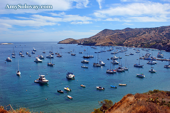 Isthmus Cove in Banning Harbor -- Two Harbors, California, Catalina Island