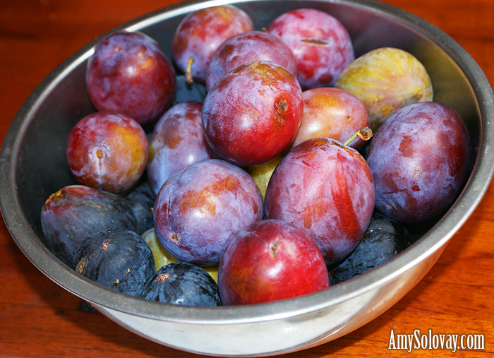Plums and Figs From the Island of Sardinia in Italy