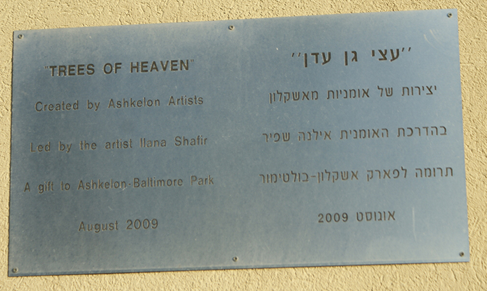 This Placard Accompanies the Trees of Heaven Mosaic Art Exhibit at Park Baltimore in Ashkelon, Israel